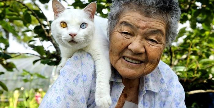 La entrañable historia gráfica de una anciana y su gato Fukumaru